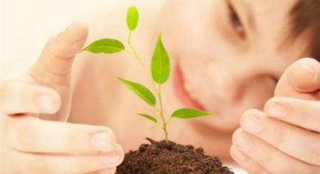agricoltura-biologica-460x250