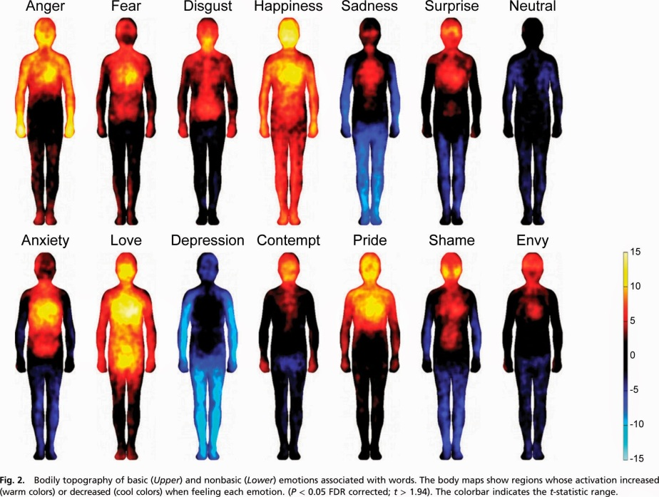 Body-map-of-emotions-in-color-2.jpg