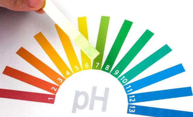 PH-Wert-Teststreifen-660x400